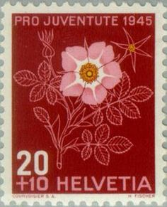 Issued in 1945, Switzerland - Alpine rose (Rosa pendulina syn Rosa alpina)