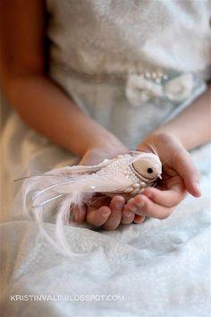 Winter bird, via Flickr.