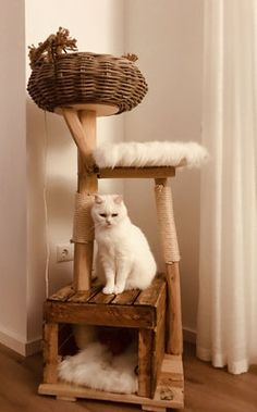 Satisfied purrs - natural wood trees for cats - schnurrwerk - Cat Tree House, Diy Cat Tree, Cool Cat Trees, Gatos Cats, Photo Chat, Cat Room, Cat Condo, Wood Tree, Wooden Cat Tree
