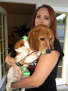 beagle rescue lucky 9