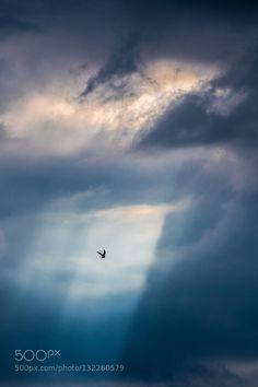 Heaven call by SLAZT