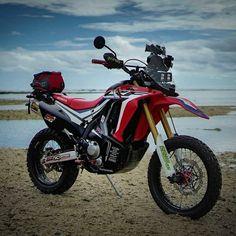 31 Honda Bikes Ideas Honda Bikes Honda Motorcycle