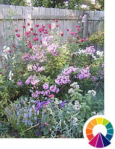 Explore Cornell - Home Gardening - Using Color in Flower Gardens - Analogous and Adjacent Color Beautiful Flowers Garden, Beautiful Gardens, Flower Garden Pictures, Tall Flowers, Simple Flowers, Flower Landscape, Garden Cottage, Colorful Garden, Garden Boxes