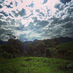 The #Gisakura #Tea Estate in #Rwanda is a very scenic area. This place is located in the Western province, close to #NyungweNational Park. I will definitely visit here again.