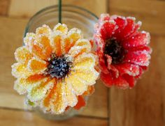 Crystal Flowers: could make cute Christmas ornaments.