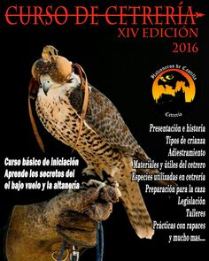 Ya están disponibles las fechas para el nuevo curso de cetrería y manejo de aves rapaces.  Infórmate, plazas limitadas.  www.halconerosdecastilla.com/cursos.htlml