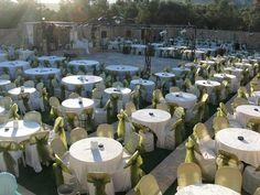 Sünnet düğünlerinde sünnet çocuğunun oturacağı özel tasarım sünnet koltukları kiralaması yapmaktayız.Bu özel sünnet koltukları için bizi hemen arayınız. http://www.sunnetkoltugu.net/