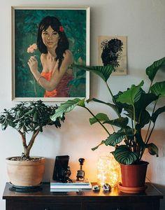 Micro garden at home
