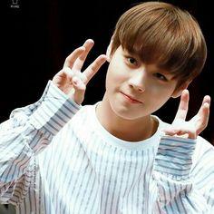 """ © hoonee home Sehun, Park Jihoon Produce 101, Park Bo Gum, Cho Chang, Baby Park, Produce 101 Season 2, Child Actors, Kim Jaehwan, Pop Idol"
