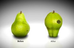 Be a muscle pear- Gold Gym Ad on the Behance Network