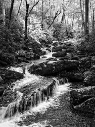 Smokey Mountain  Hidden Cascades in Black and White #blackandwhitephotography #cascades #smokeymountains