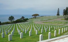 Fort Rosecrans National Cemetery in San Diego, California. Fort Rosecrans has an elegant simplicity and tidy white headstones similar to the look of Virginia's Arlington National Cemetery—but with the added beauty of a waterfront setting overlooking San Diego Bay.
