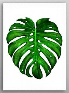Monstera Leaf Paintings Art Print by DigitalizedTeam - X-Small Leaf Drawing, Plant Drawing, Plant Painting, Plant Art, Painting Metal, Pop Art Posters, Poster Prints, Painted Leaves, Leaf Art