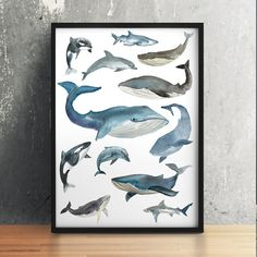 Amazing Whale poster. Gorgeous Nautical print for your home and office. Adorable Dolphin decor. Pretty hand drawn Watercolor print.  BUY 1 GET 1