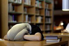 Soneca na hora do trabalho: conheça o travesseiro-ostra perfeito!