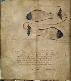 """Aratus's (c. 315-240 B. C.) """"Phaenomena"""""""