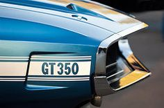 Car Featured Images - 1969 Ford Shelby GT 350 Convertible Emblem  by Jill Reger