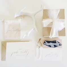 Pretty chic rustic photography packaging. Jade Reilly Photography. Branding by Cast Calligraphy. Feathers and antlers.