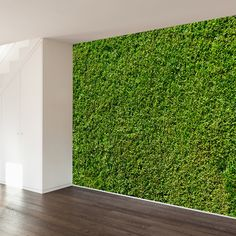 Over The Hedge Wall Mural Decal