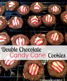 Double Chocolate Candy Cane Cookies - This year Sarah wanted to share another one of her amazing desserts with YOU! You don't want to miss this because Sarah has taken a simple chocolate chip cookie recipe and turned it into an amazing, candy cane cookie for Christmas!