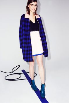 Sonia by Sonia Rykiel Fall 2014 Ready-to-Wear Collection Slideshow on Style.com