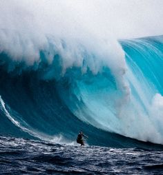 Operation Deep Blue – In Search of 100 Foot Waves! | Shock Mansion550 x 594 | 265.8 KB | www.shockmansion.com