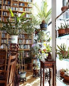 Gardening Indoor [Books and plants: what an inspired combination!] Introducing New Worlds With A Shrug: Insides: with lots of plants Indoor Garden, Indoor Plants, Home And Garden, Hanging Plants, Garden Plants, Interior Exterior, Interior Design, Deco Nature, Style Deco