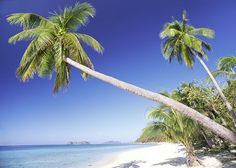 A lot of people think I am Tagalog just because I'm Filipino, but no I am from this beautiful Island, Iloilo. ❤ :)