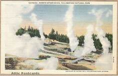 Vintage linen postcard of the Norris Geyser Basin in Yellowstone National Park, Wyoming.