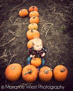 Little Pumpkin First Birthday Photo Idea Pumpkin Patch Birthday, Pumpkin Birthday Parties, Pumpkin First Birthday, Baby Girl First Birthday, October Birthday Parties, Halloween 1st Birthdays, Fall 1st Birthdays, Pumpkin 1st Birthdays, Halloween Birthday