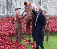 War Horse star Joey visits Tower of London poppies - Michael Morpurgo, best selling author of War Horse, planted a poppy and then returned to read the Roll of Honour, which is held daily at twilight and sees the names of 180 serving military killed during WWI being read out - 20 Oct 2014