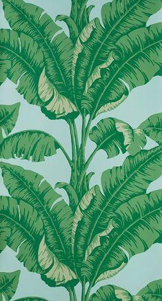 Des papiers peints d'ete : Papier peint La Havane (Nobilis).