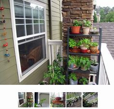 nice simple balcony garden using recycled containers
