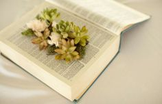 PHOTOS: Rad Reused Planter Ideas   Earth911.com  Way cool and crazy ideas for plants pots.