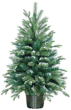 christmas trees snowey winston 3ft christmas tree