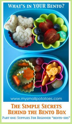 Overview of bento supplies for kids lunches. My son would love the bottom one, since it's got cucumbers in it. :)