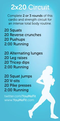 2 x 20 circuit - lower body, abs, upper body, cardio