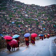 Monks in Seda, Tibet (Buildings in the background are quite unique)
