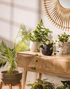 Terrazzo, een materiaal dat volop in de mode is, is de hoofdrolspeler in de bloempotten Braydon. Dit is wit/zwart en is perfect om op het terras te zetten, omdat het weersbestendig is, en ook voor de woonkamer, omdat het ontwerp past bij de ecotrend om de natuur naar ons interieur te brengen. It's up to you! #plantpots #plantenpot #bloempot #pot #plantenstyling #plantstyling #planten #terrazzo