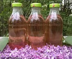 orgona szorp Edible Flowers, Creative Food, Preserves, Natural Health, Natural Remedies, Beverages, Dessert Recipes, Cooking Recipes, Tea
