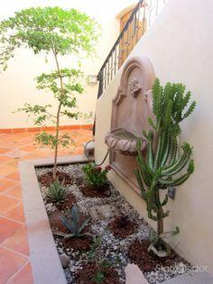 Ideas for a desert courtyard garden