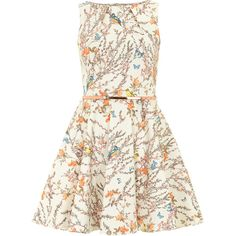 Closet Multi floral belted dress ($89) ❤ liked on Polyvore featuring dresses, vestidos, multi color, floral print skater skirt, floral skater skirt, belted dress, cotton dress und bird dress