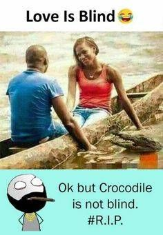 Love Is Blind But Crocodile Is Not Funny Couples Memes Very Funny Memes Really Funny Memes