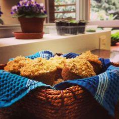 muffins de quinua, avena  y naranja