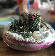 Succulent, Sand, Argonite Amber #MissCellaneous
