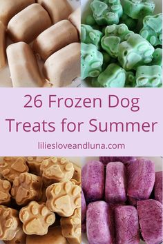 A variety of frozen dog treats to make for your dog this summer. Frozen Dog Treats, Your Dog, Shawarma Recipe, Dog Treat Recipes, Dogs, Summer, Summer Time, Pet Dogs, Doggies