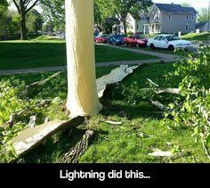 Lightning strike aftermath…<--------This is like Harry's scar splitting open! Wait...... OMG!!!!!!!!!