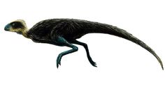 """Pisanosaurus (pron.:""""PIE-san-uh-SAWR-us"""") is an extinct genus of primitive ornithischian dinosaur that lived approximately 228 to 216 million years ago during the latter part of the Triassic Period in what is now South America. (Wikipedia)"""