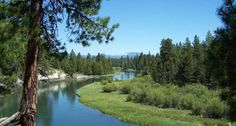 """La Pine State Park - One of Central Oregon's many beautiful state parks and also home to Oregon's largest redwood tree, nicknamed """"Big Red."""""""