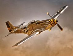 An admiration of the beauty of the classic warbirds. Ww2 Aircraft, Fighter Aircraft, Military Aircraft, Fighter Jets, Military Art, Military History, Propeller Plane, Old Planes, War Thunder